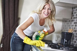 Domestic Cleaners in Westminster